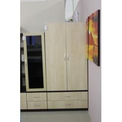 Двухдверный шкаф в гостиную Плазма